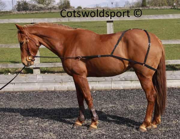 http://www.cotswoldsport.co.uk/Main-Shop/pics/e/ek/Combi_TrainingAid_1.jpg