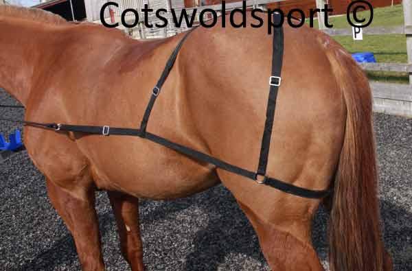 http://www.cotswoldsport.co.uk/Main-Shop/pics/e/ek/Combi_TrainingAid_2.jpg
