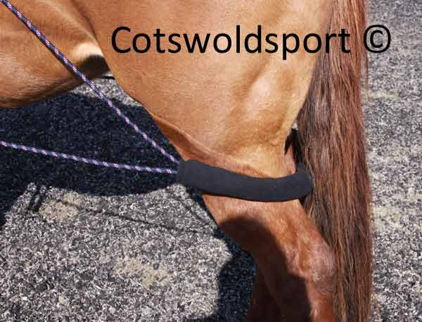 http://www.cotswoldsport.co.uk/Main-Shop/pics/e/ek/Pulley_TrainAid_4.jpg