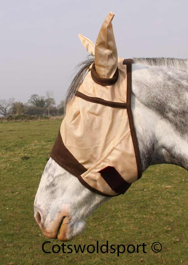 http://www.cotswoldsport.co.uk/Main-Shop/pics/e/ek/flymask_caramel1.jpg