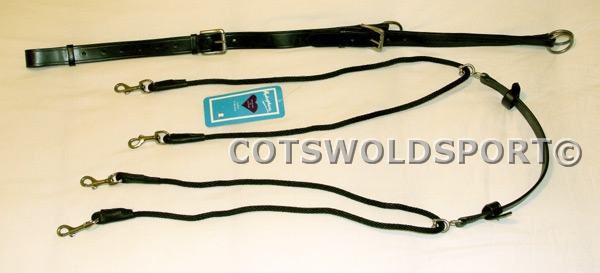 http://www.cotswoldsport.co.uk/Main-Shop/pics/e/leather/breasplates/de_gouge4.jpg