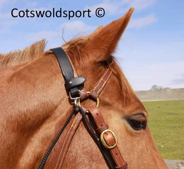 http://www.cotswoldsport.co.uk/Main-Shop/pics/e/leather/training/Chambon_elast_2.jpg